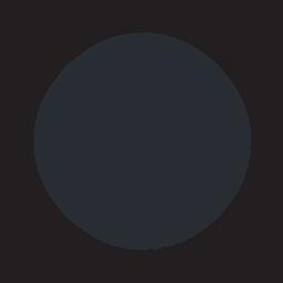 check_icon